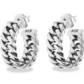 3671-Chain-Earring-Silver_432-one_Front_8718997005091